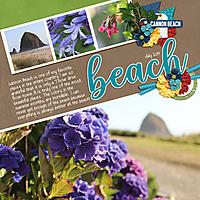 July-19-Cannon-BeachWEB.jpg