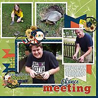June-16-Nauvoo-turtleWEB.jpg