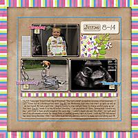 June_8-14a-_2_sm.jpg