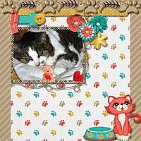Kitty_Cat_Keley_2.jpg