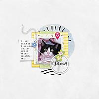 LO1_Kitty_Kitty_.jpg