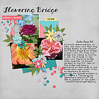 Lake_Lure_Flowering_Bridge_1.jpg