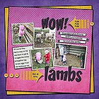 Lambs_med.jpg