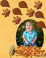 Leaves_Ben_snp.jpg