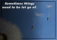 Let-Go.jpg