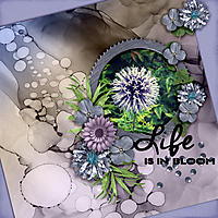 Life-is-in-bloom.jpg
