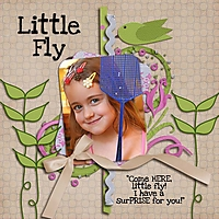 Little_Fly_dynabel_sm_copy.jpg