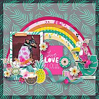 Live-love-alohaWEB.jpg