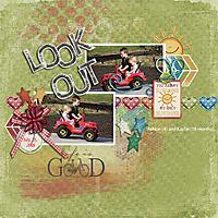 Look_Out_gallery.jpg
