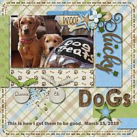 Lucky-Dogs.jpg