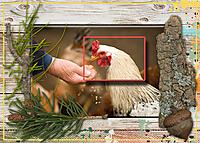 MOC-21_Botanicals-and-Organic.jpg