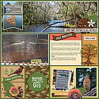 Manatee-Springs-JBS-LifePagesPocket7-tp3-copy.jpg