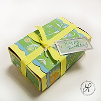 Match_Box_-_Copy.jpg