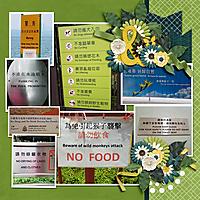 May-17-Hong-Kong-SignsWEB.jpg