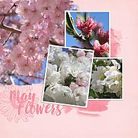 May-Flowers2.jpg