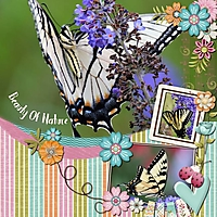 May2018ScrapliftChallenge-000-Page-1.jpg