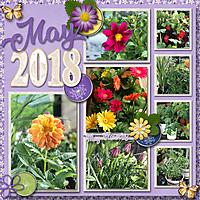 May_Flowers5.jpg