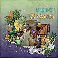 Meeting-A-Princess.jpg