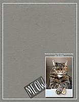 Meow6.jpg