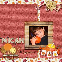 Micah_Fallmarket_rfw.jpg