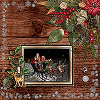 Microferk_TraditionalChristmas_12-2016_copy.jpg