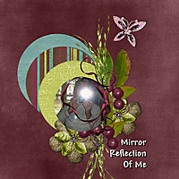 Mirror_Reflection_Of_Me_500x500.jpg