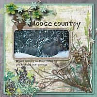 Moose_country.jpg