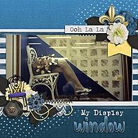 MyDisplayWindow_600x600_.jpg