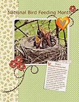 National-Bird-Feeding-Month.jpg