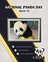 National-Panda-Day-March-16.jpg