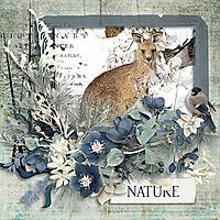 Nature_copy.jpg