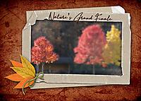 Nature_s-Grand-Finale.jpg