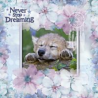 Never-Stop-Dreaming1.jpg