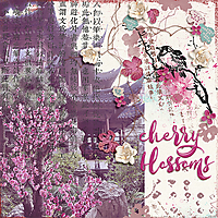 OAWA-CherryBlossoms-600.jpg