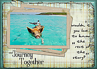 Our-Journey-Together.jpg