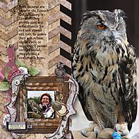 Owl_sanctuary.jpg