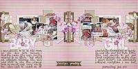 PL-PF1-CrT-CM-Full-12013-up.jpg