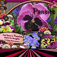 Pansies_Web.jpg
