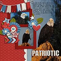 Patriotic_510x510_.jpg