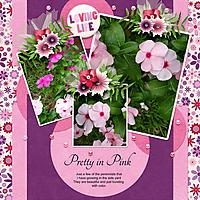 Pink-Perrinnals.jpg