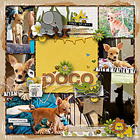 Poco-Collage-WEB.jpg