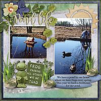 Pond-life.jpg