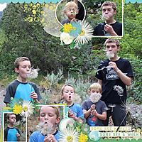 Prov-Canyon-Dandelions-MFish_SummerBliss_03.jpg