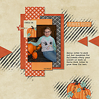 Pumpkin_Patch-001_copy.jpg