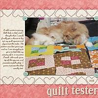 Quilt_Tester.jpg