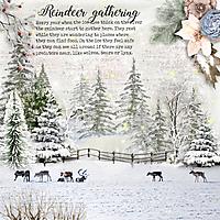 Reindeer-gathering.jpg