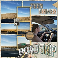 RoadTrip2020_TeenDriver_600x600_.jpg