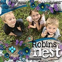 Robins_Nest_med_-_1.jpg