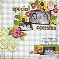 SGS_Owl-Be-Home_Special-Cousins.jpg