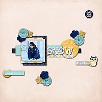 SNOW201.jpg
